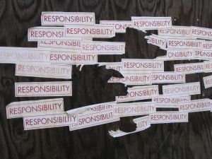 Responsibility for Others' Actions and Voyager