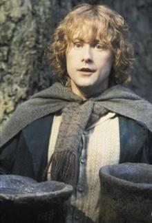 Peregrin Took Lord of the Rings