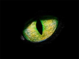 Mishupishu Eye