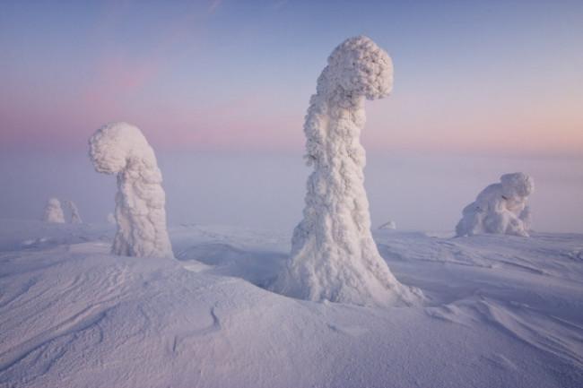 Lapland Arctic Sentinels Niccolo Bonfadini
